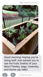 nice text message about planter boxes in use