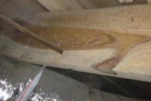 plumber notched joist damage