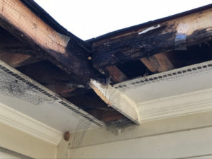 wood rot on sub fascia