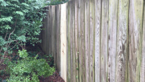 Upright, repaired fence with new pickets
