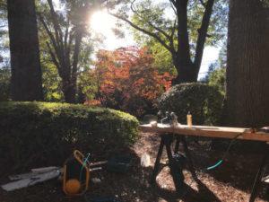 nice sunny day working in yard